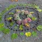 Mandala Hortensia tulipier